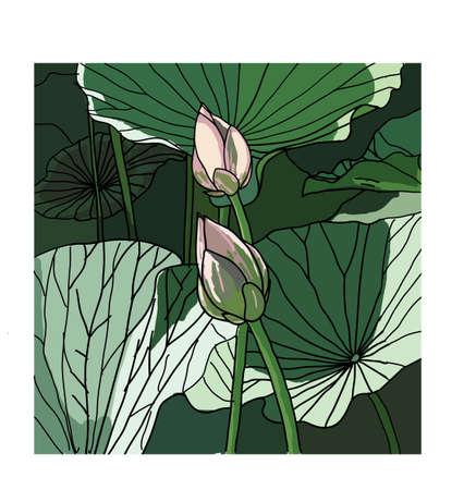 Realistic Oriental lotus - a flower illustration. Vector