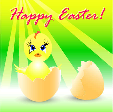 easter holiday illustration with chicken, isolated on white background Stock Vector - 8547216