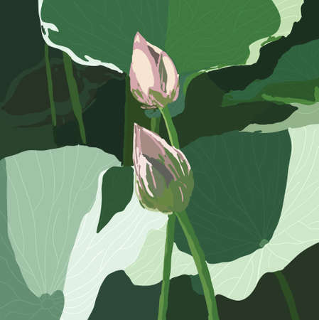 EPS 10 Realistic Oriental lotus - a flower  Vector illustration. Vector