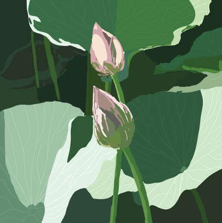 EPS 10 Realistic Oriental lotus - a flower  Vector illustration. Vector