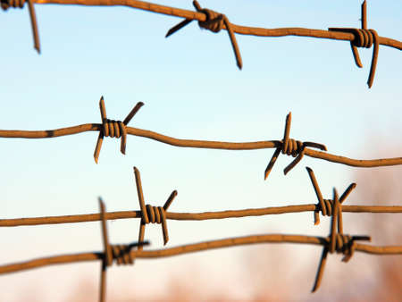 symbol victim: barbed wires against blue sky. Stock Photo