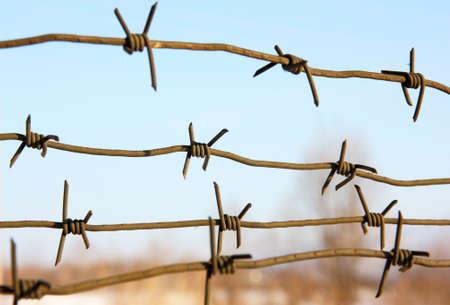 barbed wires: alambres de p�as contra el cielo azul.