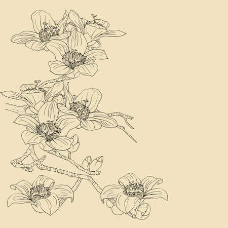 botanical branch: tender twig blossoming orchids on a light background  Illustration