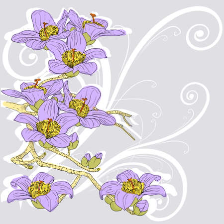 tender twig blossoming orchids on a light background  Vector