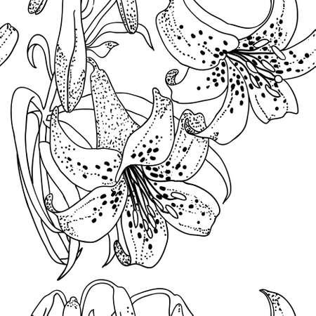 lily flowers: Fondo transparente con flores de Lily