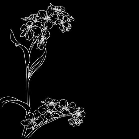 tender twig blossoming orchids on a background  Vector