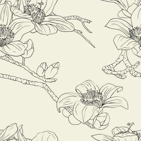 botanika: Bezešvé tapety s květy orchidejí