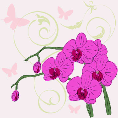 twig blossoming orchids on a background with butterflies Vector