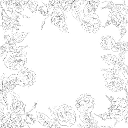 Vector floral background, frame from flowers roses Vector