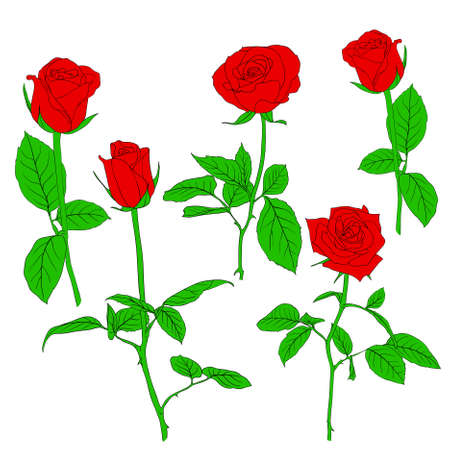 vieze handen: Set in de hand getekende stijl rozen.  illustratie.