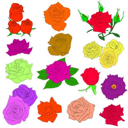 vieze handen: Set van in de hand getekend stijl rozen. Vector EPS 10 illustratie.