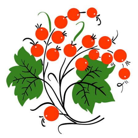 природа: Букет из красной смородины. Спелые ягоды. Вектор Иллюстрация