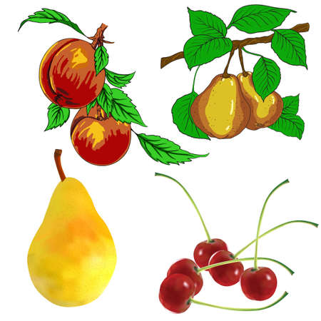 set of pear fruits cherry and peach Vector