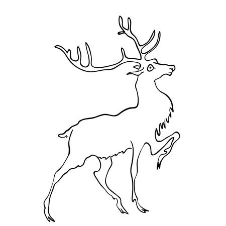 drawing of deer Vector