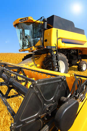 combine harvester: combine harvester on a wheat field with a blue sky Stock Photo