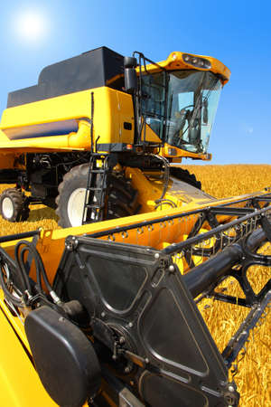 combine harvester on a wheat field with a blue sky Stock Photo