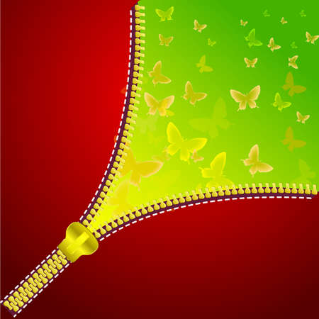 Abstract background with open zipper for design. Colorful background with butterfly. Vector