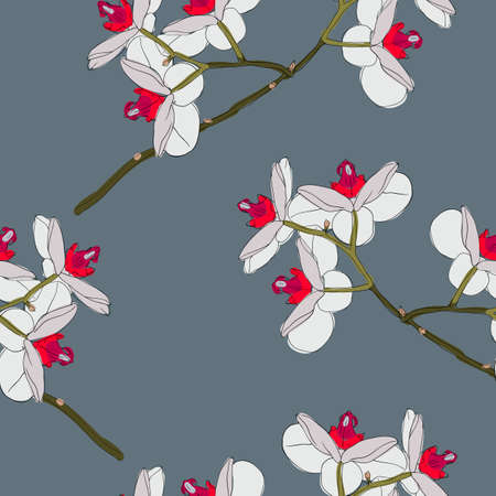 Orchid flowers. Seamless wallpaper. Vector