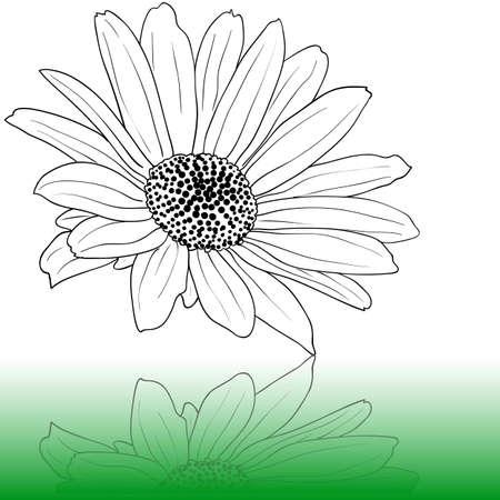 hape: mano disegnato illustrazione vettoriale Vettoriali