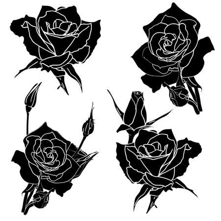 tattoo rose flower Stock Vector - 11582767