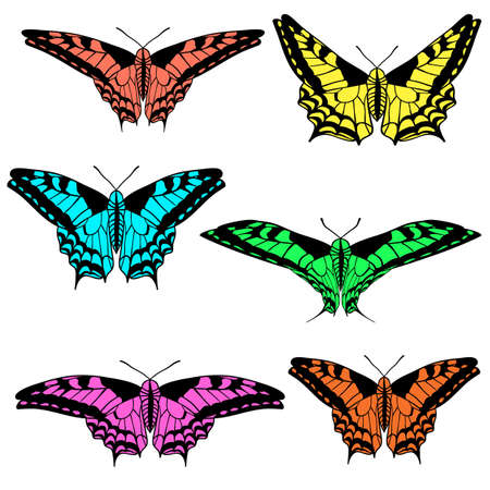Vector set of beautiful butterflies. Vector