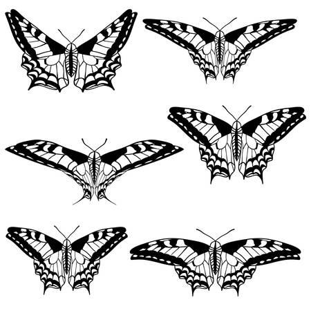 tatuaje mariposa: Vector conjunto de hermosas mariposas. Vectores