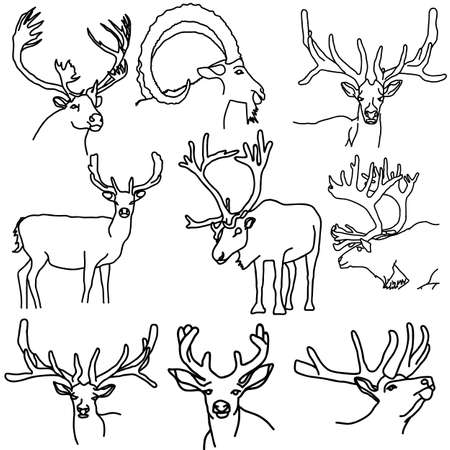 A set of deer, elk, and goats illustration. Vector