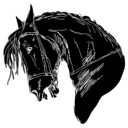 Black horse silhouette isolated on white for design.
