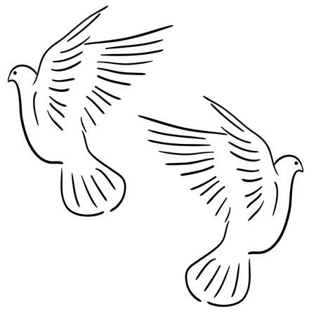 Concept of love or peace. Set of white vector doves. Stock Vector - 12481854
