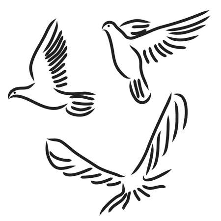 flocks: Concept of love or peace. Set of white vector doves.