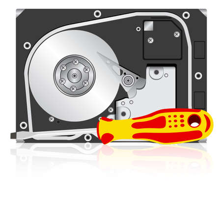 disk drive: Computer hard disk drive and screwdriver. Vector illustration.