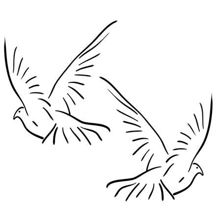 oiseau dessin: Concept de l'amour ou la paix Set de colombes blanches vecteur Illustration