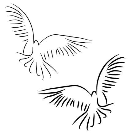 doves: Concept of love or peace  Set of white vector doves