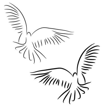 freedom logo: El concepto de amor o un conjunto de vectores de paz de las palomas blancas