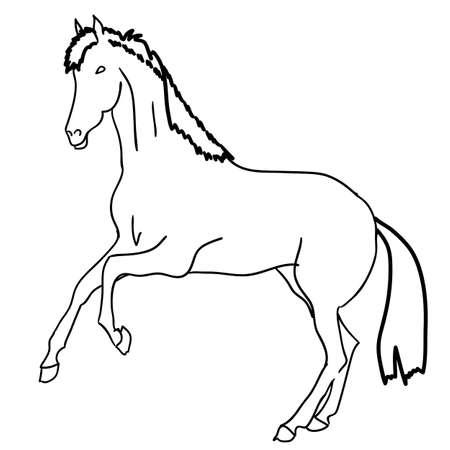 Vector version. Black horse silhouette isolated on white for design. Stock Vector - 12919298