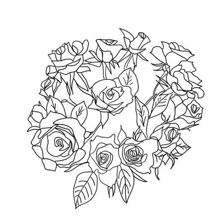 Large bouquet of roses  vector Vector