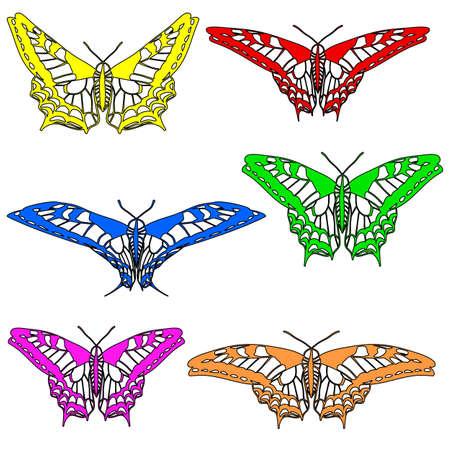 Vector set of beautiful butterflies  Vector
