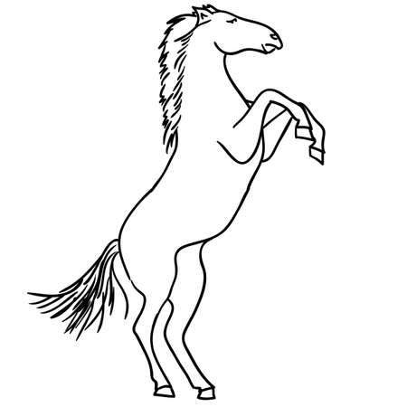 Vector version  Black horse silhouette isolated on white for design  Stock Vector - 12919296