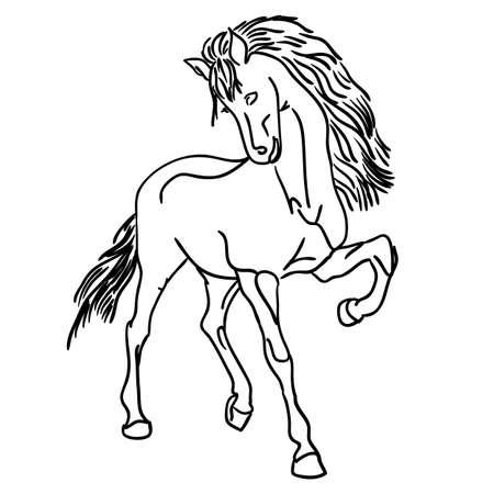 yegua: Vector versi�n caballo Negro silueta aislados en blanco para el dise�o
