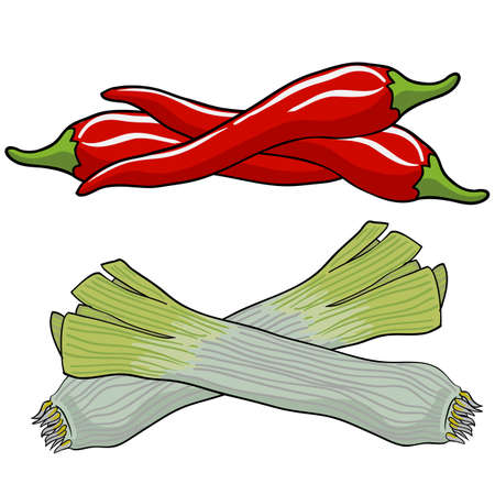 leek and red pepper, vector illustration. Vector