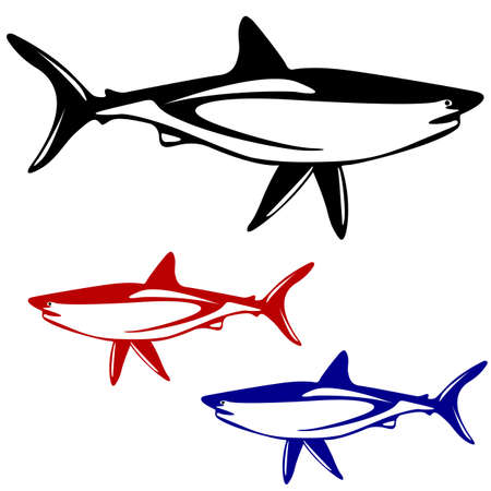 Shark,  black and white outline   illustration  Vector