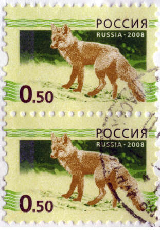 RUSSIAN-CIRCA 2008: A stamp printed in the Russian Federation, shows the fox (Vulpes vulpes), circa 2008 Stock Photo - 17794569