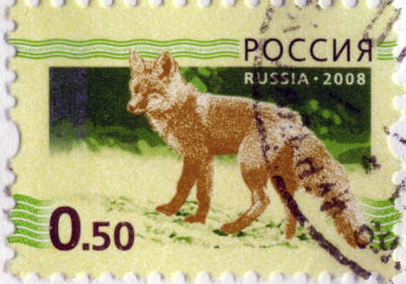 RUSSIAN-CIRCA 2008: A stamp printed in the Russian Federation, shows the fox (Vulpes vulpes), circa 2008 Stock Photo - 18196335