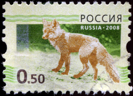 RUSSIAN-CIRCA 2008: A stamp printed in the Russian Federation, shows the fox (Vulpes vulpes), circa 2008 Stock Photo - 18196370