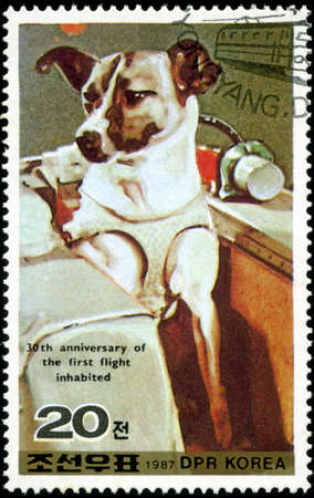 DEMOCRATIC PEOPLES REPUBLIC (DPR) of KOREA - CIRCA 1987:A stamp printed in DPR Korea (North Korea) shows Wright 30 anniversary of the first flight inhabited, dog, circa 1987 photo