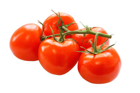 bunch of red tomatoes isolated on a white background photo