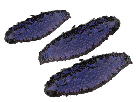 invertebrate: Trepang  (Holothuroidea, Stychopus, Cucumaria), sea invertebrate an animal,  delicatessen Stock Photo