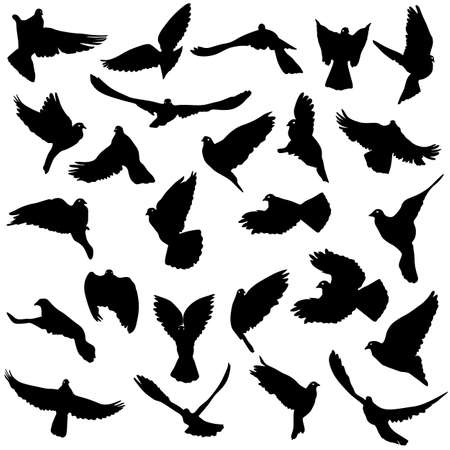 birds silhouette: Concept of love or peace. Set of silhouettes of doves. Vector illustration.