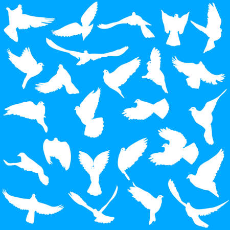 white flight feathers: Set of silhouettes of doves