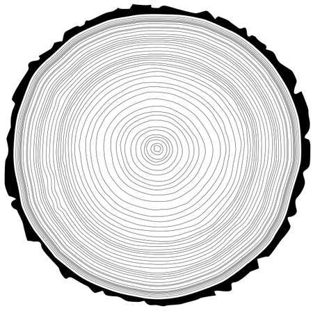 rings on a tree: Tree rings saw cut tree trunk background. Vector illustration.